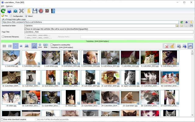 Bulk Image Downloader Full Keygen & License Key Download